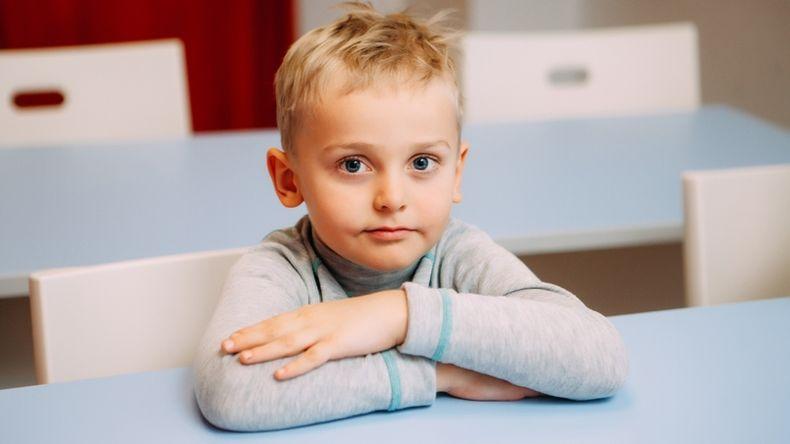 Возрастные особенности развития старшего дошкольника