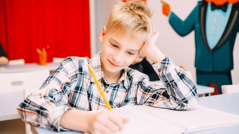 Домашние задания — необходимость?