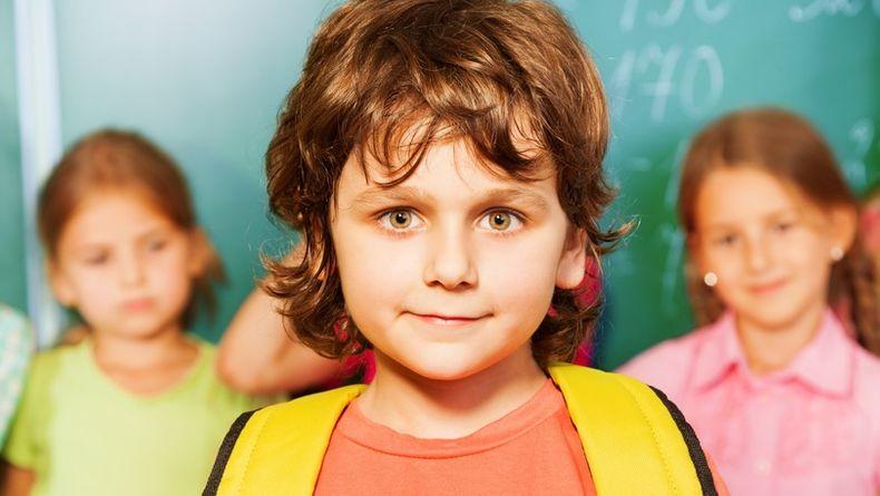 Какие существуют стадии и периоды развития интеллекта ребенка?
